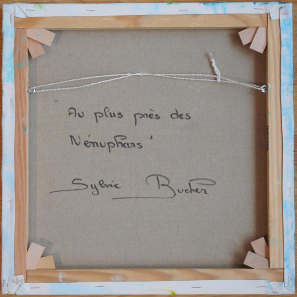 au_plus_pres_des_nenuphars_d